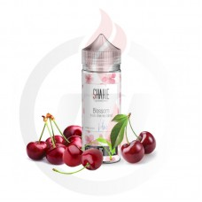 AEON SHAKE BLOSSOM 24ml Flavorshot